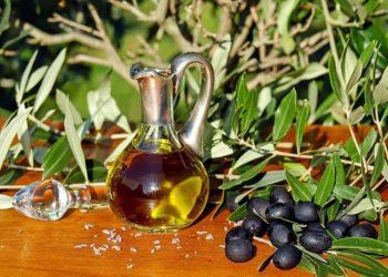 Ilustrasi: (Sumber Foto: total-croatia.com)